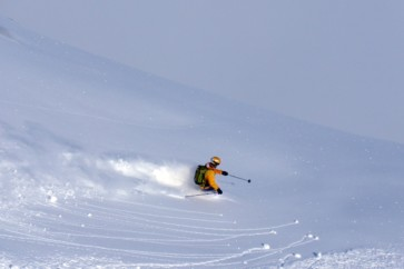 Free ride and Heliskiing