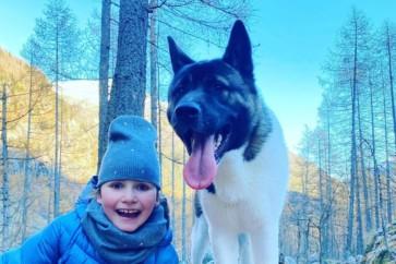 Viaggi con il tuo cane? Ecco il nostro Dog Kit!